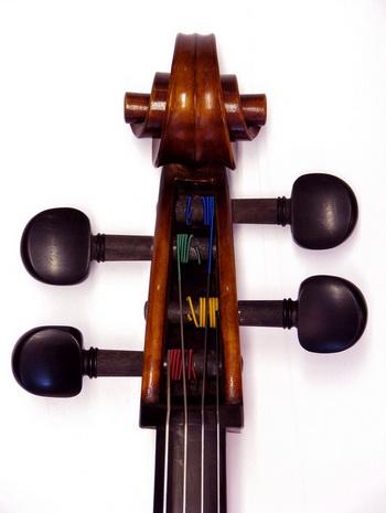 cello_pegbox