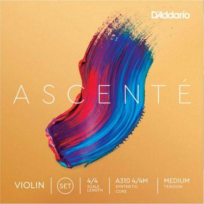 Daddario Ascente violin